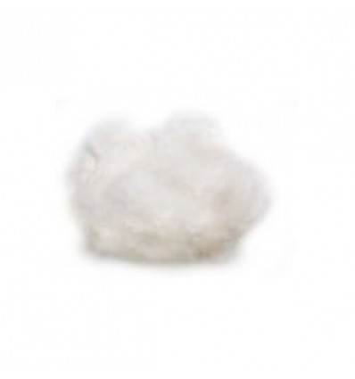COTON ABSORBANT